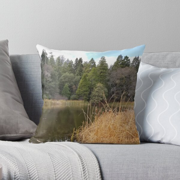 Mountain pond in the fall Throw Pillow