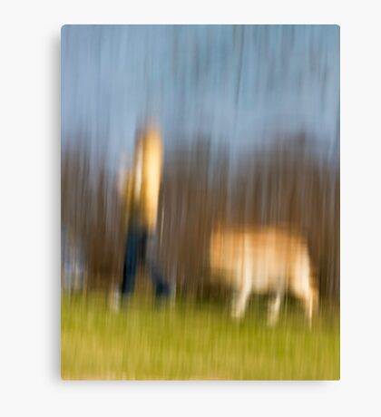 Walking the dog Canvas Print