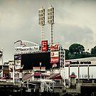 Great American Ball Park 2 - Cincinnati by Mary Carol Story
