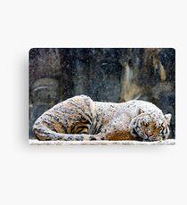 Warm Coat Canvas Print