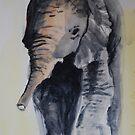 elephant sketch by Lynn Hughes