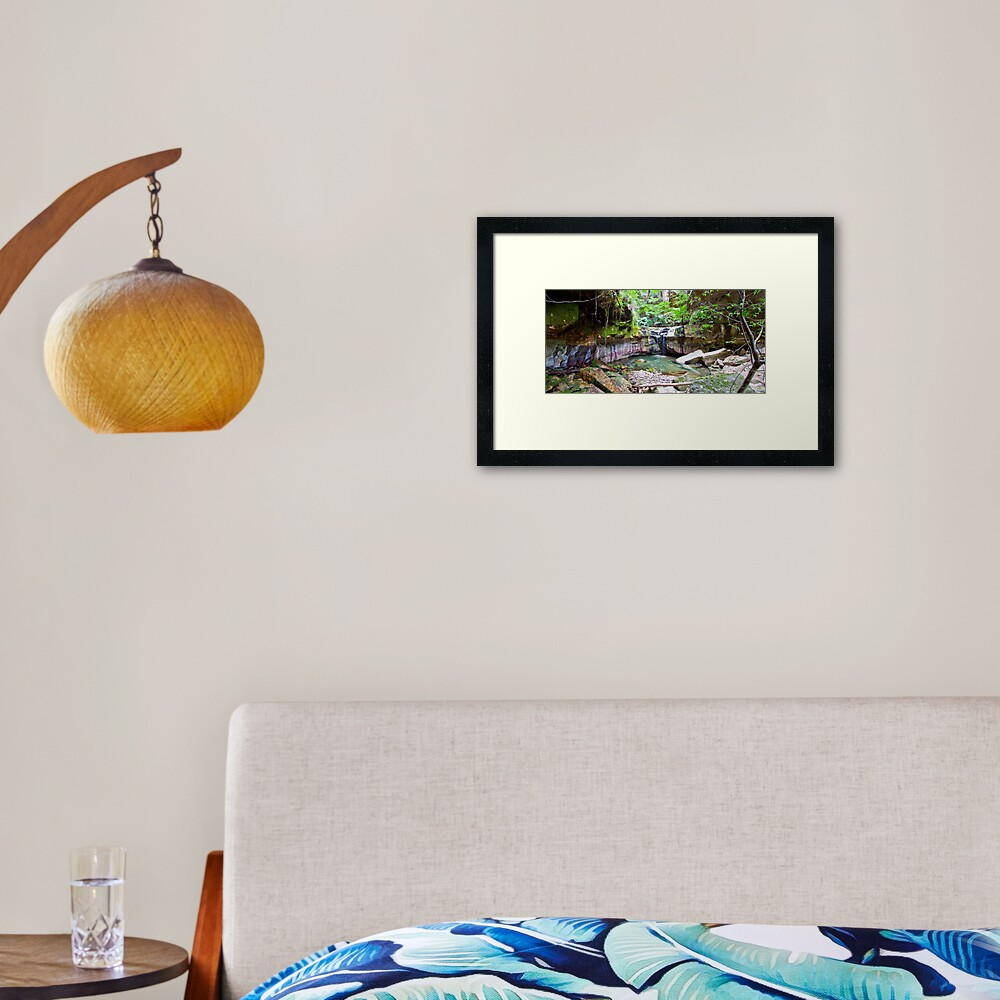 The Moss Gardens Framed Art Print