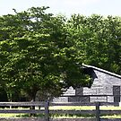 Grey Barn and Fence by Ginger  Barritt