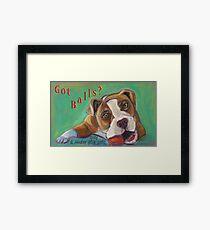 Bulldog - Spay/Neuter Framed Print