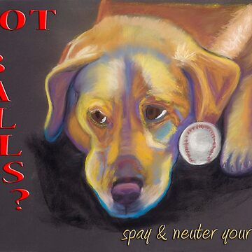 Golden Lab - Spay/Neuter by Annimalloverf