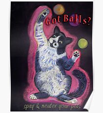 Juggling Cat - Spay/Neuter Poster