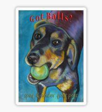 Got Balls? Heinz 57 Sticker