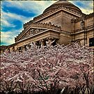 Brooklyn Museum by Chris Lord