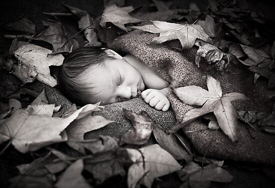 In Autumn by Basia McAuley