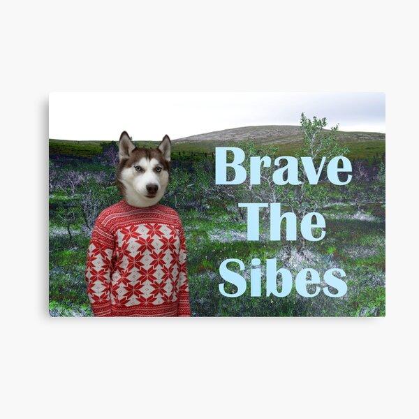 Brave the Sibes Metal Print
