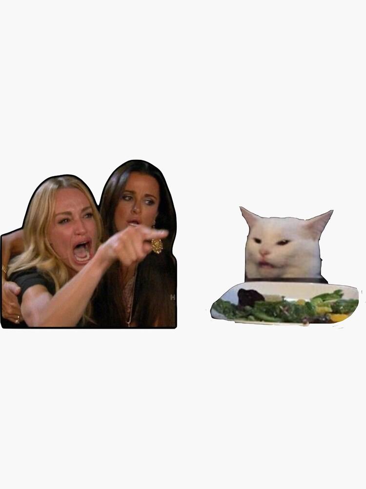 Woman yells at cat meme by thebriskneesart