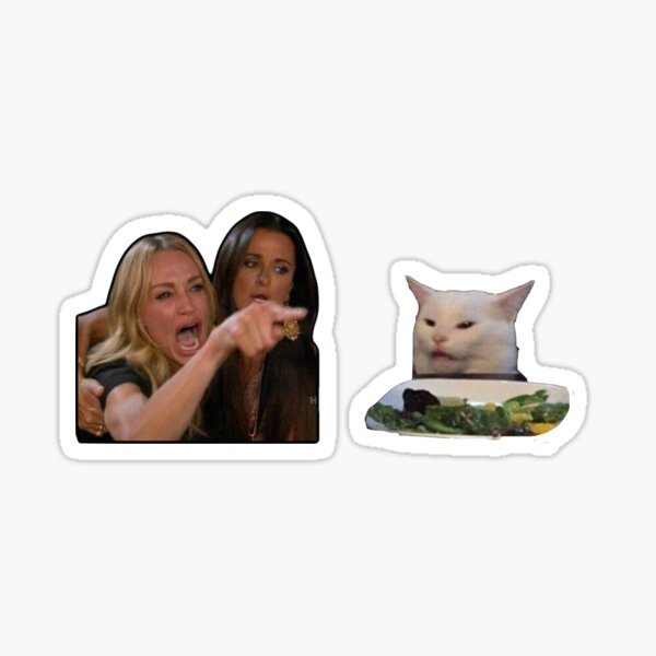 Woman yells at cat meme Sticker