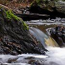 a stones flow by paul erwin