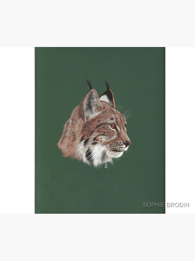 Portrait of Lynx by SophieBrodin