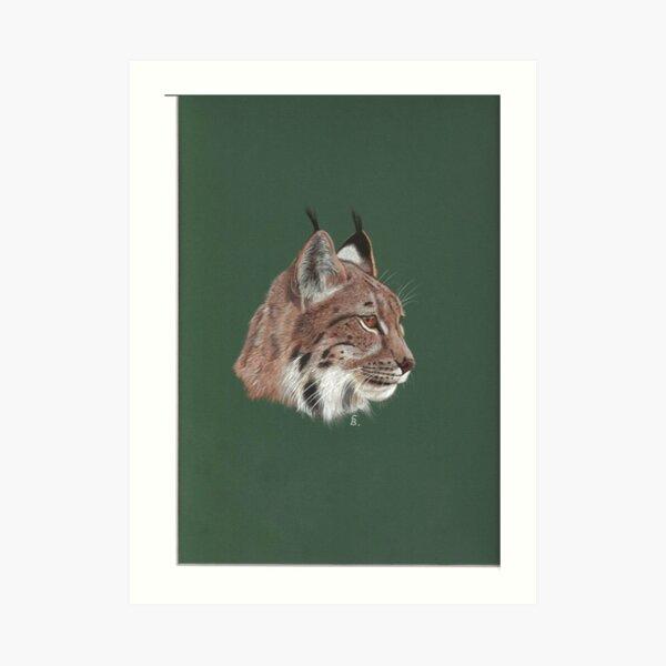Portrait of Lynx Art Print