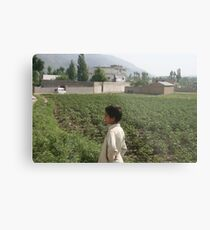 Pakistan- An Afghan boy  view the house of former al-Qaida leader Osama bin Laden Metal Print