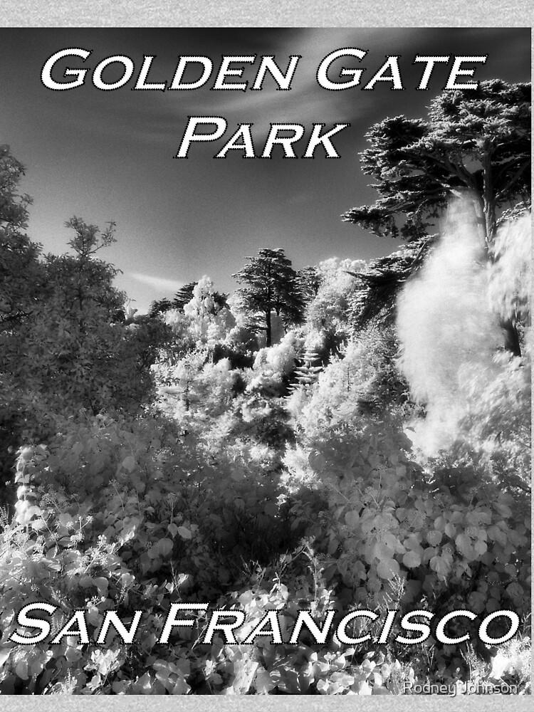 Strybing Arboretum, Golden Gate Park, San Francisco by rodneyj46