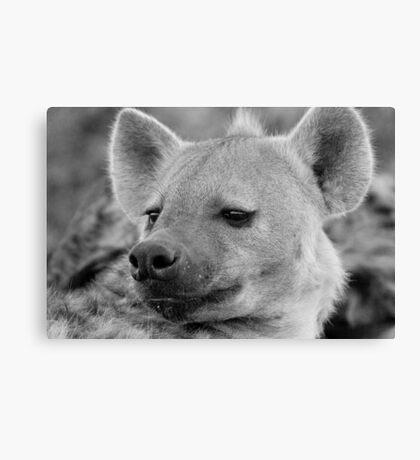 Hyena Profile Canvas Print