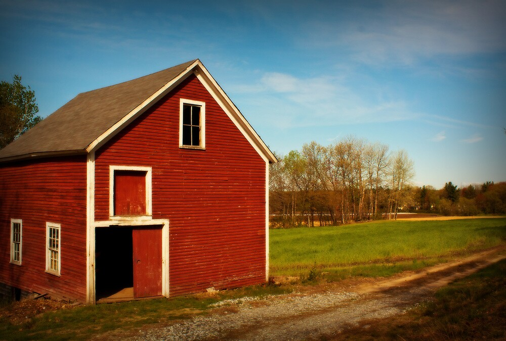 Little Red Barn by Diana Nault