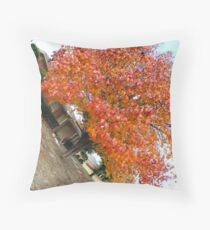 a fish eye picture Throw Pillow