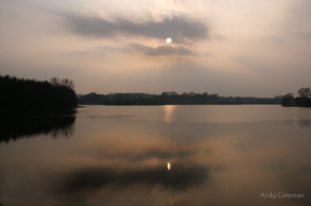 Bewl Water in Spring by Andy Coleman