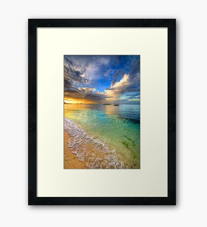 Colour Splash Framed Print