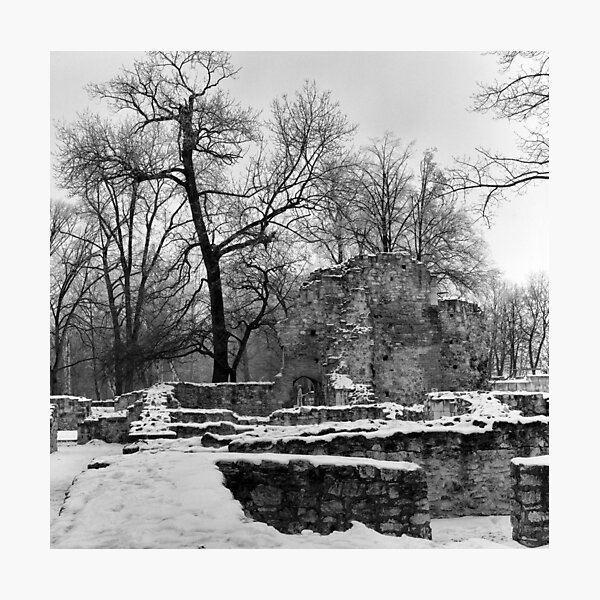 Ruins of the Dominican Convent, Margaret Island, Budapest Photographic Print