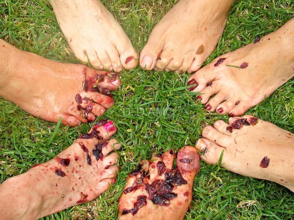 Charitable wine stomping by D. D.AMO