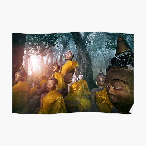 Valley of the Buddhas  Poster