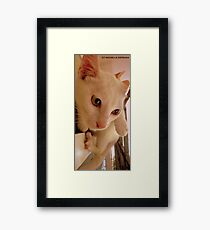 IMPECCABLE HEADSHOTS Framed Print