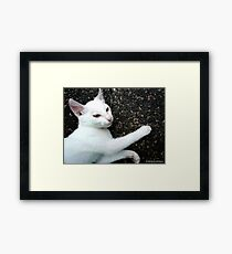 AFFECTION Framed Print