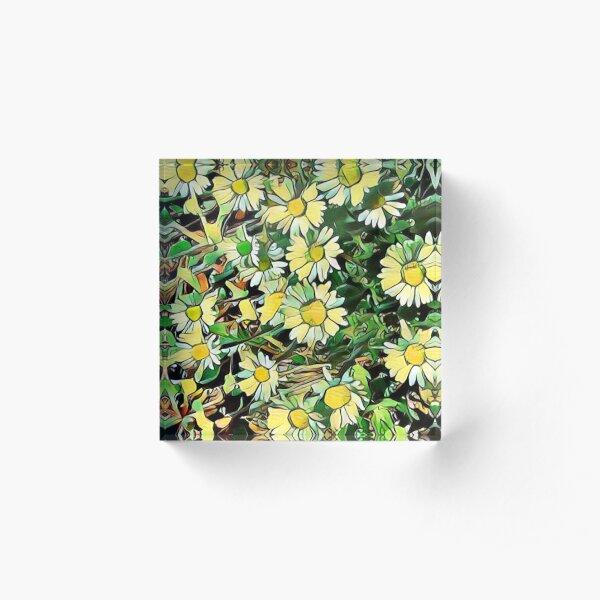 Yellow Daisy Floral Acrylic Block