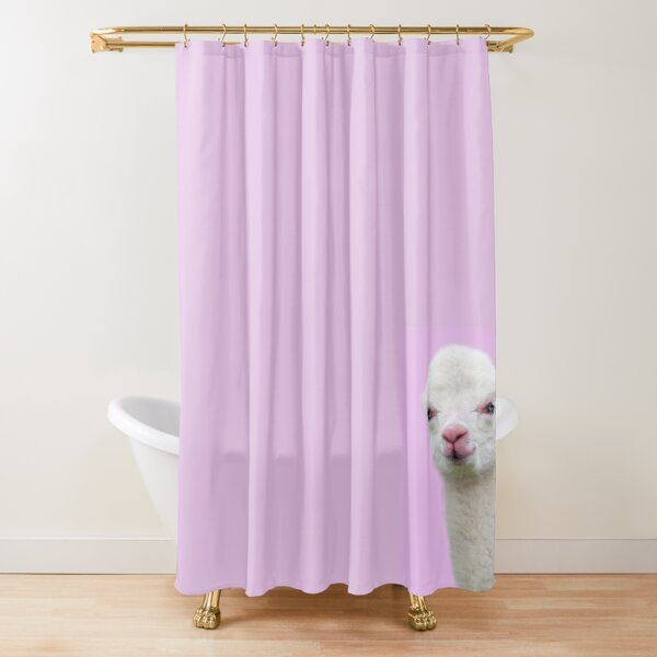 Baby Alpaca with pink background Shower Curtain