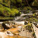 Smooth Flow by Patrick Reid