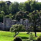 CAETHAYS CASTLE by AndyReeve
