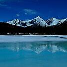 ForgetMeNot Pond by Justin Atkins