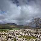 Southerscales To Whernside by SteveMG