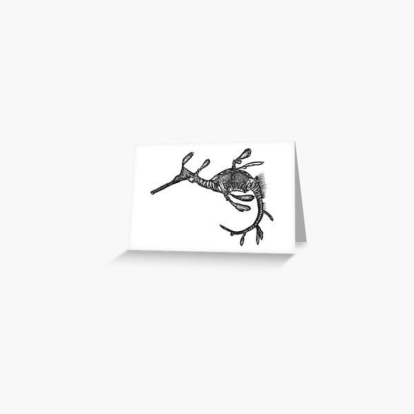 Pee-Jay the Baby Weedy Sea Dragon  Greeting Card
