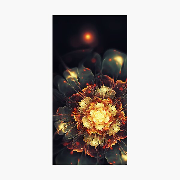 Blooming Heat Photographic Print