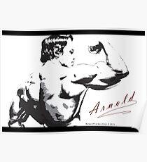 Arnold Schwarzenegger - Rear Bicep Shot Poster