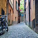 Narrow Street in Northern Italy by David Friederich