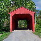 Private Bridge by James Brotherton
