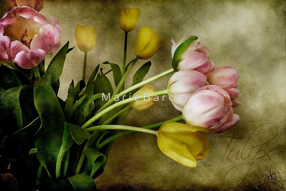 Tulips by M a r i e B a r c i a