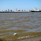 Mississippi River and New Orleans  by Wanda Raines