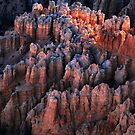 Hoodoos At Sunrise - Bryce Canyon by Stephen Vecchiotti