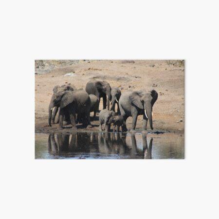 Elephant Herd Art Board Print