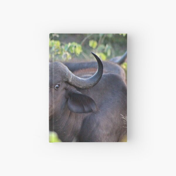 Buffalo Hardcover Journal