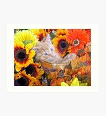 Di Milo ~ Cute Kitty Cat Kitten in Decorative Fall Flowers Art Print