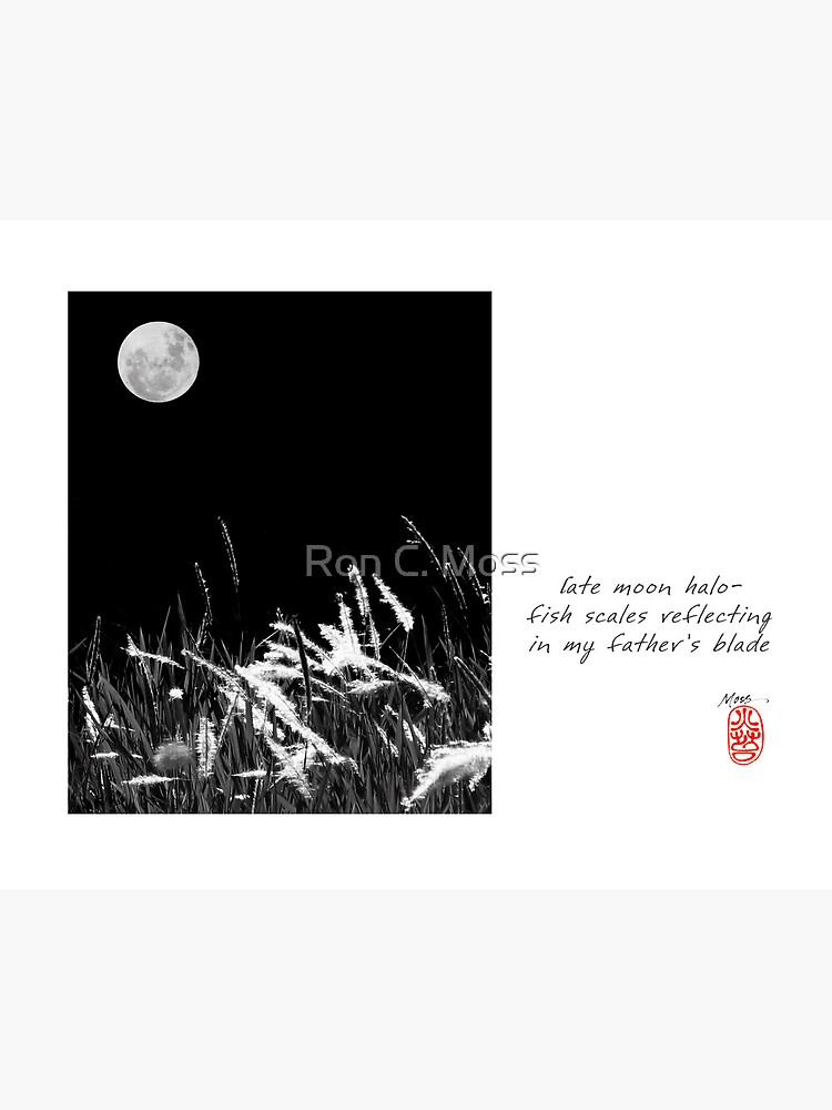 Late Moon by ronmoss