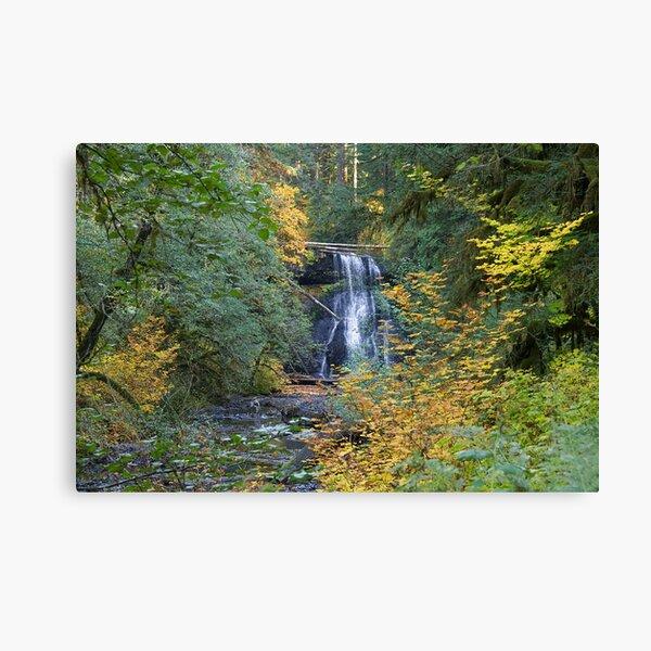 850_2840 Canvas Print